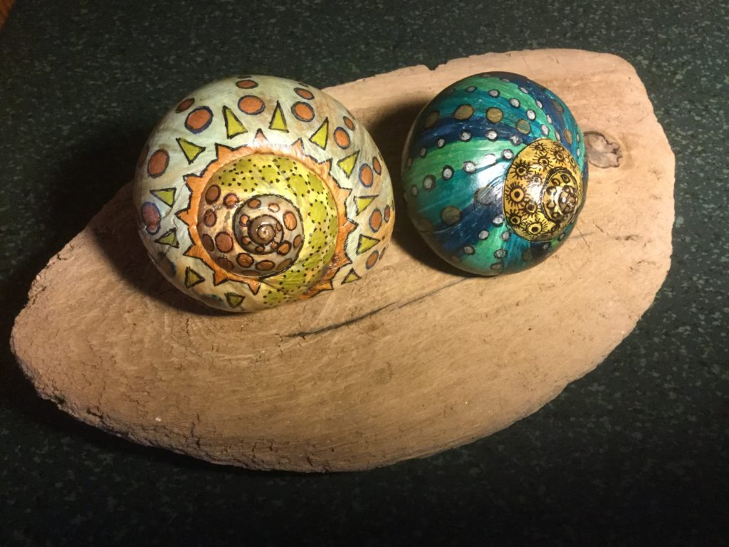 Snail shells found at Sewell beach,painted with sharpie pens